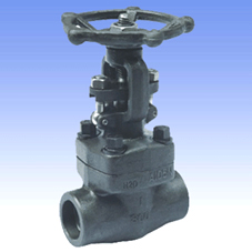 Forged steel and SS gate valves with BW/SW