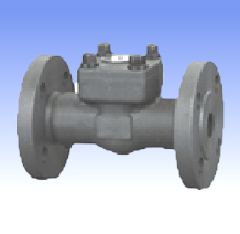 Forged steel and SS lift check valves with flanged