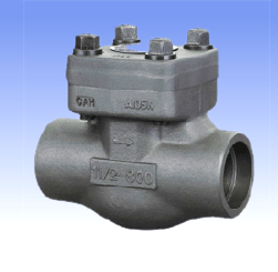 Forged steel and SS lift check valves with BW/SW