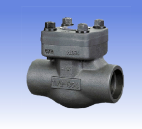 Forged steel and SS swing check valves with BW/SW