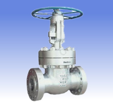 Carbon steel and SS gate valves