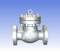 Carbon steel and SS swing check valves
