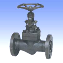 Forged steel and SS globe valves with flanged